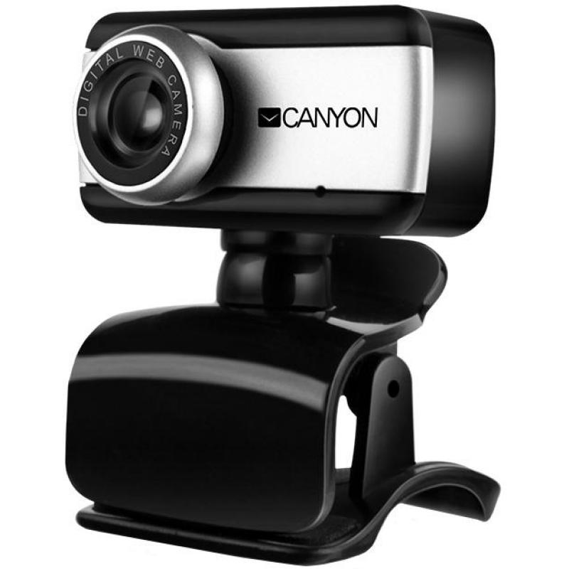 ona-i-oni-veb-kamera